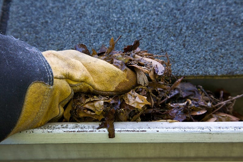 Roofing companies in Orlando will tell you that clogged gutters lead to roofing issues.